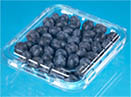 Blueberry Packaging