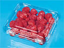 Raspberry&Blackberry Packaging